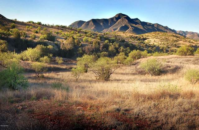 Lot 1 Rail X Ranch Estates Drive #1, Patagonia, AZ 85624 (#21931108) :: Luxury Group - Realty Executives Arizona Properties