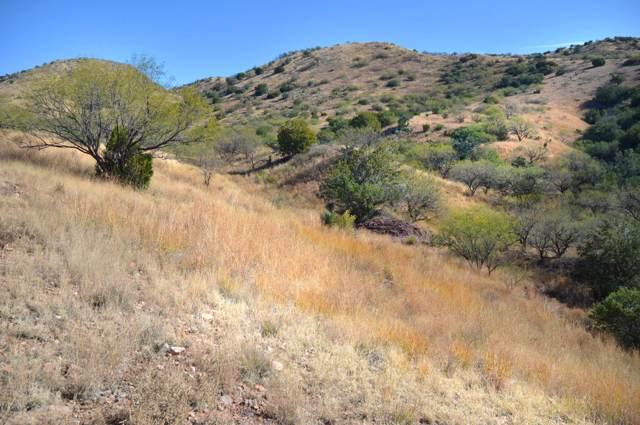 Lot 2 Rail X Ranch Estates Drive #2, Patagonia, AZ 85624 (#21931111) :: Long Realty - The Vallee Gold Team