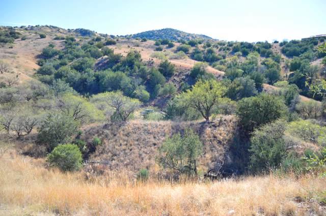 Lot 3 Rail X Ranch Estates Drive #3, Patagonia, AZ 85624 (#21931112) :: Long Realty - The Vallee Gold Team