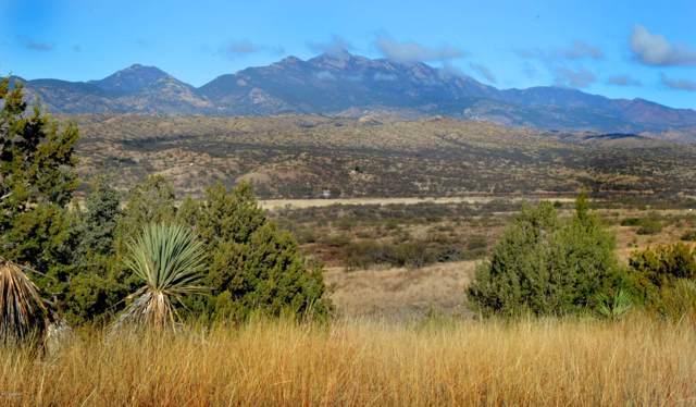 Lot 23 Rail X Ranch Estates Drive #23, Patagonia, AZ 85624 (#21931116) :: Long Realty - The Vallee Gold Team