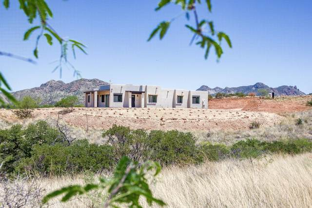 116 Red Mountain Court, Patagonia, AZ 85624 (#22000349) :: Long Realty - The Vallee Gold Team
