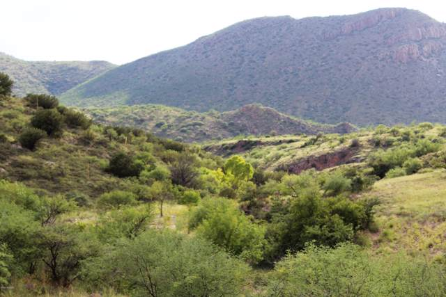 TBD Alamo Canyon Drive #71, Tubac, AZ 85646 (#22000715) :: Tucson Property Executives