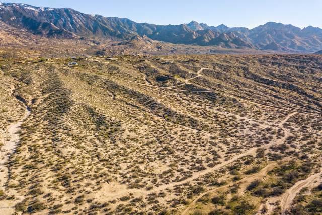 Cloud Nine Drive, Catalina, AZ 85739 (#22000798) :: Long Realty Company