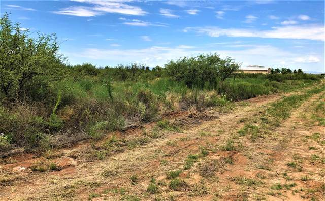 3662 E Doe Ranch Road #38, Pearce, AZ 85625 (#22000841) :: The Local Real Estate Group | Realty Executives