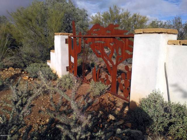 11145 W Calle Madero, Tucson, AZ 85743 (#22001061) :: Long Realty - The Vallee Gold Team