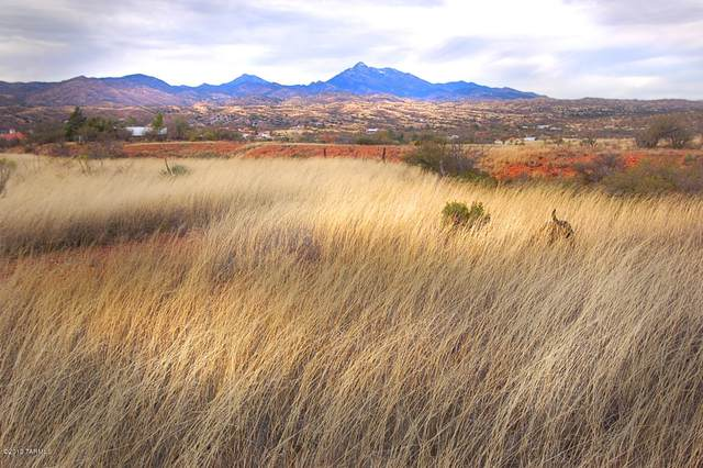 Lot 7 24 Trailwood Court Lot 7, Patagonia, AZ 85624 (#22002232) :: Long Realty - The Vallee Gold Team