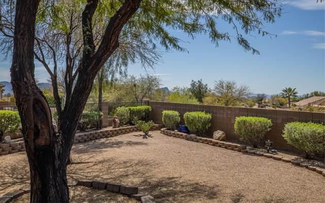 12979 N Desert Flora Lane, Marana, AZ 85658 (#22002287) :: Long Realty - The Vallee Gold Team