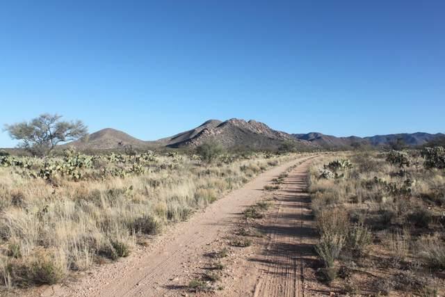 15005 S Rexene Avenue #338, Tucson, AZ 85736 (#22004064) :: Long Realty Company