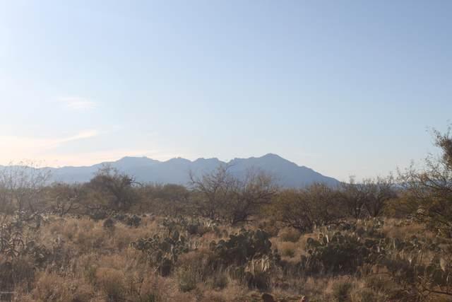 14728 S Sierrita Mountain Road #430, Tucson, AZ 85736 (#22004068) :: Long Realty Company