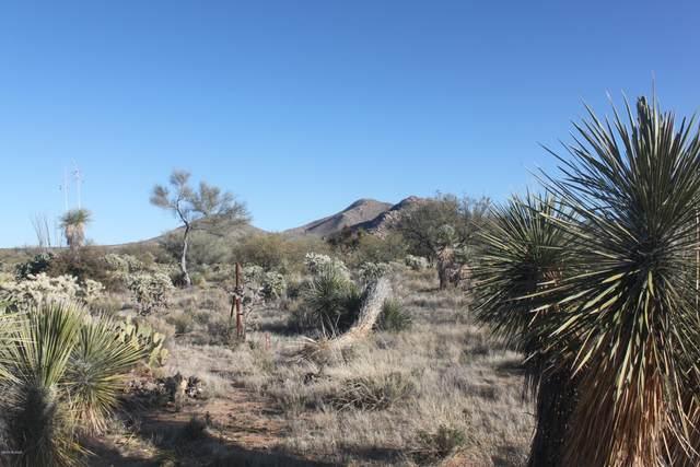 14295 Moxie Place #363, Tucson, AZ 85736 (#22004072) :: Long Realty Company