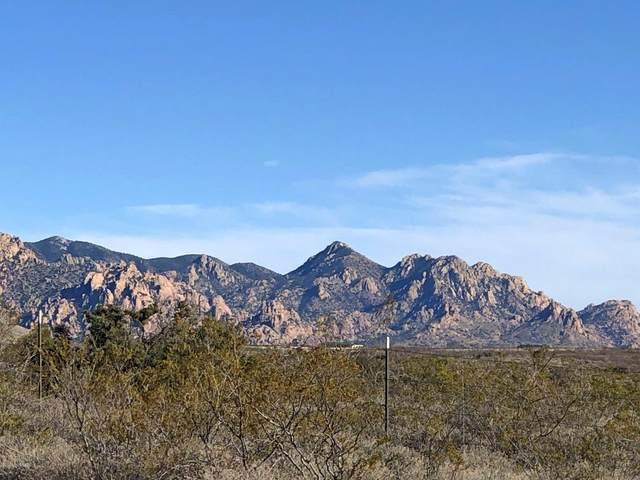 183 E Dragoon Ranch Road #183, St. David, AZ 85630 (#22004550) :: The Josh Berkley Team