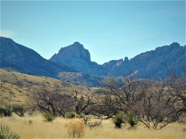 TBD 2 Lots W Treasure Rd W Of Palm #2, Pearce, AZ 85625 (#22004774) :: Long Realty - The Vallee Gold Team