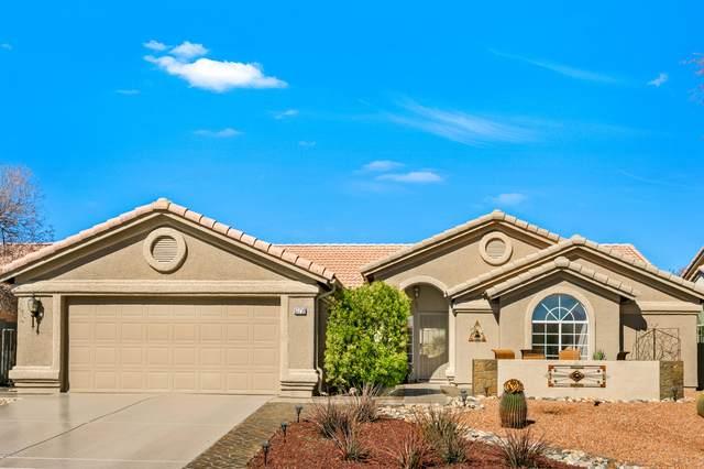 63730 E Cat Claw Lane, Tucson, AZ 85739 (#22005057) :: Long Realty Company