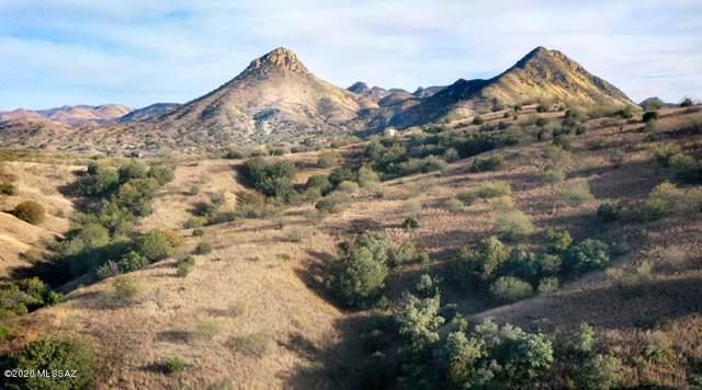 TBD Rail X Ranch Estates #14, Patagonia, AZ 85624 (#22005223) :: The Dream Team AZ