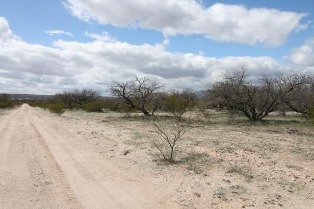 Lot 4 Gartin Ranch Trail Lot 4, Benson, AZ 85602 (#22005310) :: The Dream Team AZ