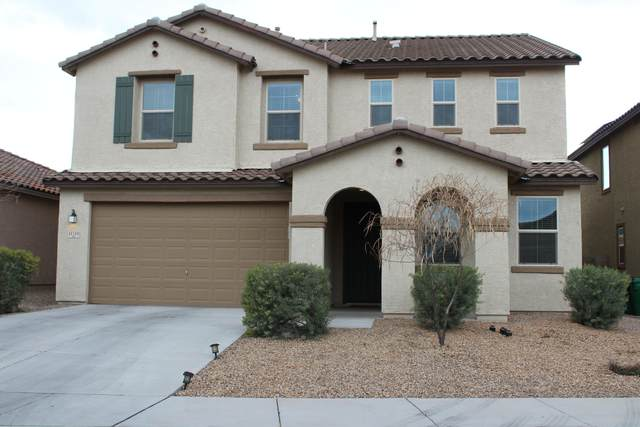 11719 W Boll Bloom Drive N, Marana, AZ 85653 (#22005320) :: Long Realty Company