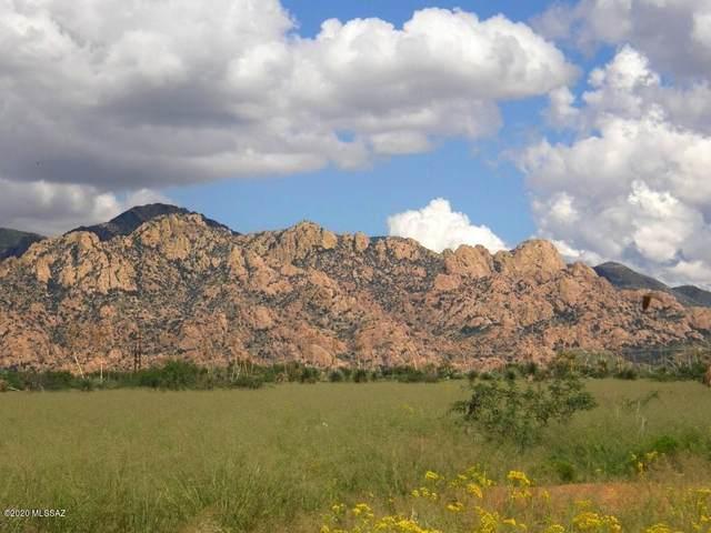 40 E Naiche Road #40, St. David, AZ 85630 (#22005866) :: Tucson Property Executives