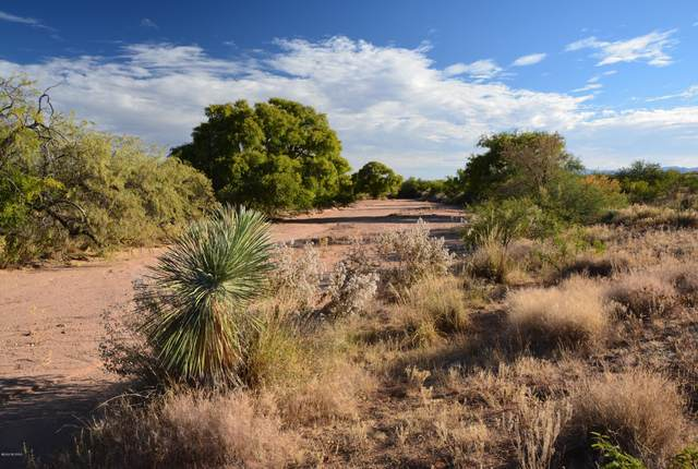 TBD W Yearling Way #78, Elfrida, AZ 85610 (#22006182) :: The Local Real Estate Group | Realty Executives