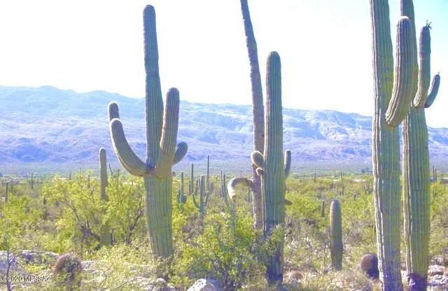 2510 N Avenida Sorgo #97, Tucson, AZ 85749 (#22006636) :: Long Realty - The Vallee Gold Team