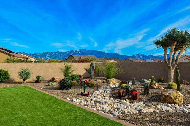 59935 E Hornbill Place, Oracle, AZ 85623 (#22007673) :: Long Realty - The Vallee Gold Team