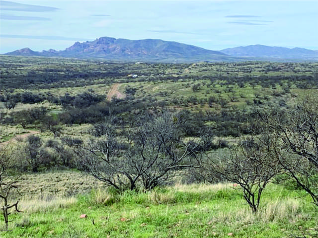 37425 S Apache Canyon Road S, Arivaca, AZ 85601 (#22008220) :: Long Realty - The Vallee Gold Team