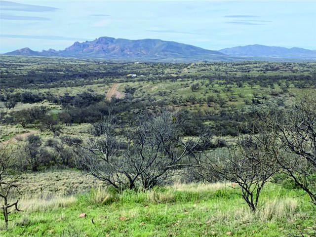 37425 S Apache Canyon Road S, Arivaca, AZ 85601 (MLS #22008220) :: The Property Partners at eXp Realty
