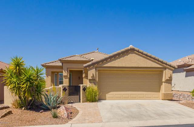 4980 W Desert Chicory Place, Marana, AZ 85658 (#22009255) :: Long Realty - The Vallee Gold Team
