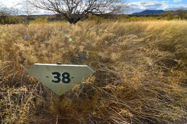 520 Threeawn Lane #38, Patagonia, AZ 85624 (#22009925) :: Kino Abrams brokered by Tierra Antigua Realty
