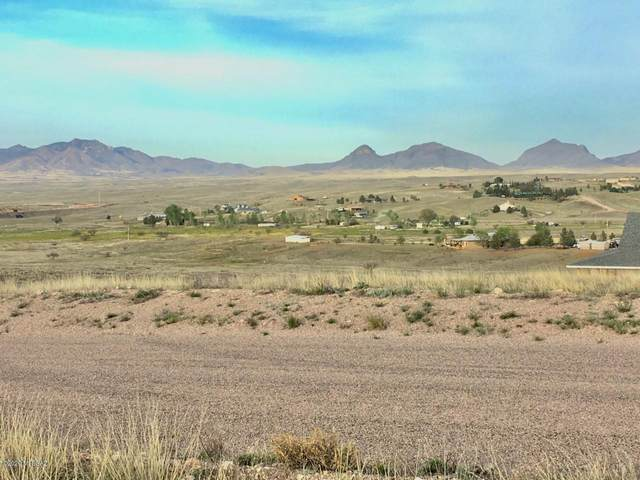 42 Cayuse Trail #111, Sonoita, AZ 85637 (#22010384) :: Long Realty - The Vallee Gold Team