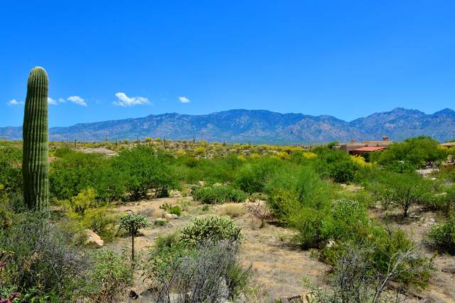 14201 N Honey Bee Trail #22, Oro Valley, AZ 85755 (#22011230) :: Long Realty - The Vallee Gold Team