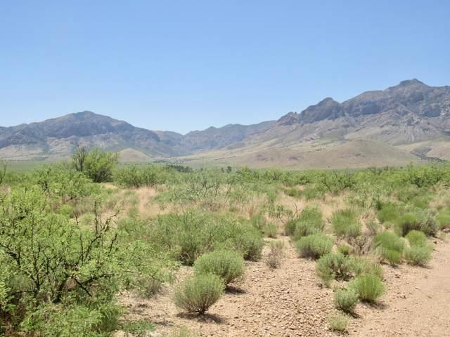 13.75 W Shash Trail, Portal, AZ 85632 (MLS #22012264) :: The Property Partners at eXp Realty