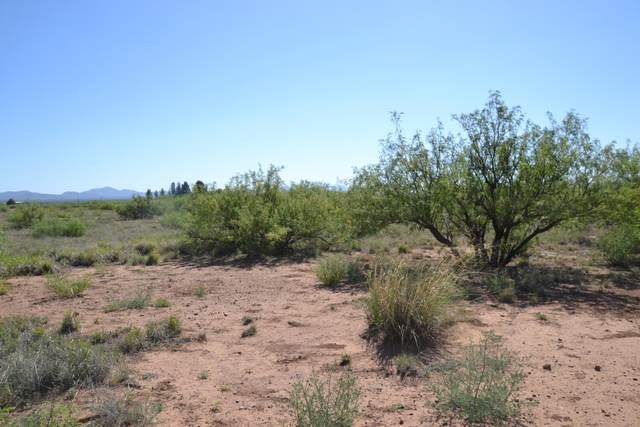 27.62 Ac Highway 191 -, Douglas, AZ 85607 (#22012273) :: Long Realty - The Vallee Gold Team
