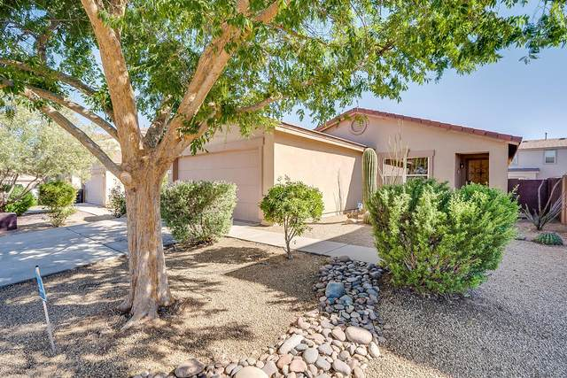 252 E Monterey Cypress Street, Sahuarita, AZ 85629 (#22012765) :: Long Realty - The Vallee Gold Team