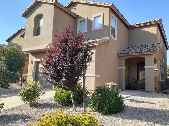 1120 E Mount Shibell Drive, Sahuarita, AZ 85629 (#22014323) :: Long Realty - The Vallee Gold Team