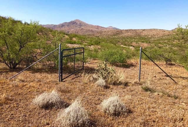 4.79 Ac N Lobo Road, Douglas, AZ 85607 (#22014624) :: Long Realty - The Vallee Gold Team
