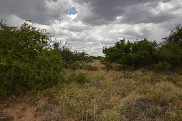 TBD E Bloomfield Road, Hereford, AZ 85615 (#22014851) :: Long Realty - The Vallee Gold Team