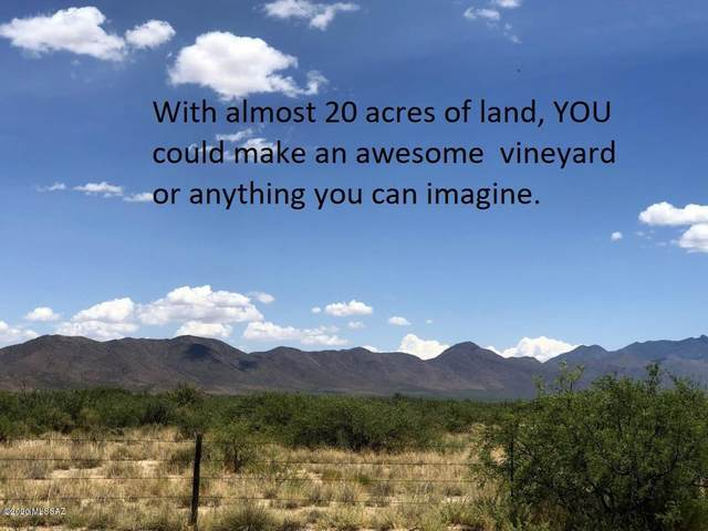 TBD N Circle I Road, Willcox, AZ 85643 (#22015986) :: Long Realty Company