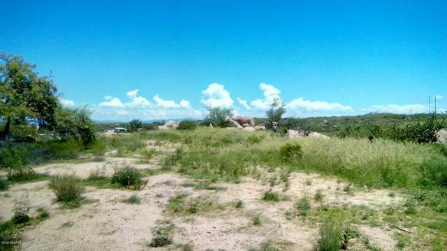 3391 N Colleen Drive, Oracle, AZ 85623 (MLS #22016613) :: The Property Partners at eXp Realty