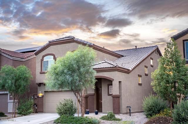 8739 N Black Pine Drive, Tucson, AZ 85743 (#22016661) :: The Josh Berkley Team
