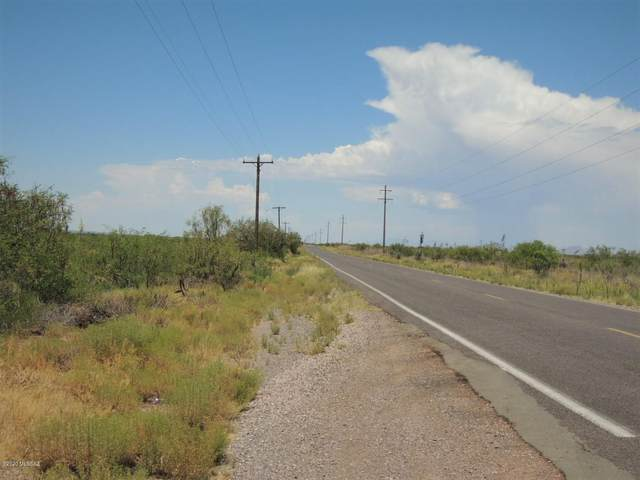 80 Acres Central Hwy & Bagby R #33, Mc Neal, AZ 85617 (#22017115) :: Long Realty - The Vallee Gold Team