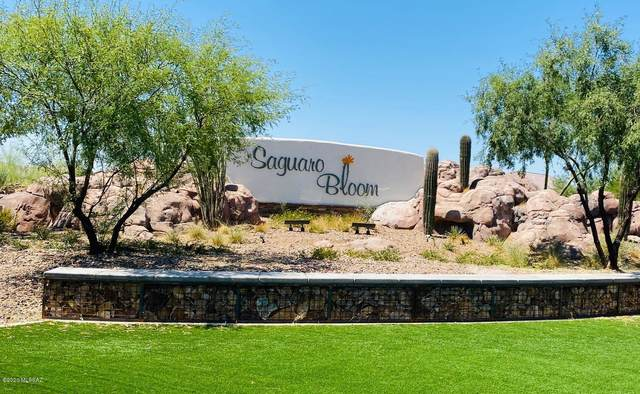 9014 W Rolling Springs Drive, Marana, AZ 85653 (#22018575) :: Long Realty - The Vallee Gold Team