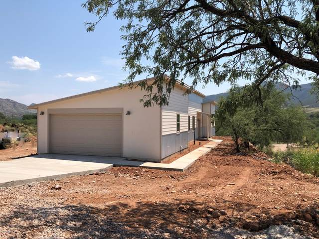 149 Roadrunner Lane, Patagonia, AZ 85624 (MLS #22019085) :: The Luna Team