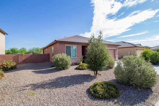 11550 W Vanderbilt Farms Way, Marana, AZ 85653 (#22019357) :: Gateway Partners
