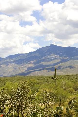 14896 E Diamond F Ranch Place L-265, Vail, AZ 85641 (#22021221) :: Keller Williams