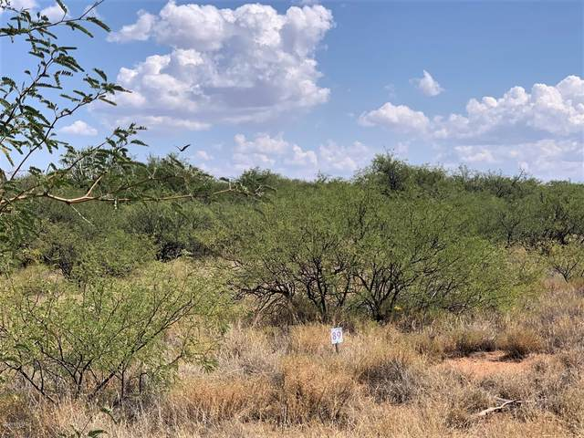 3 ac W Thunder Pass Road #89, Benson, AZ 85602 (#22022903) :: Long Realty - The Vallee Gold Team