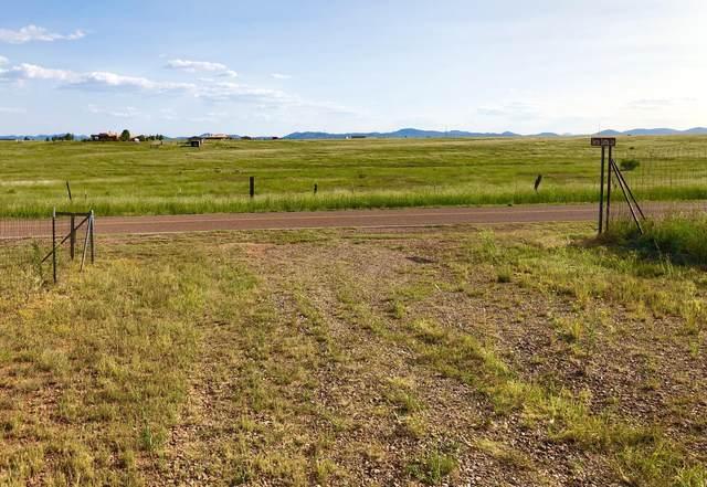 19.53 Acres, Elgin, AZ 85611 (#22023108) :: The Local Real Estate Group   Realty Executives