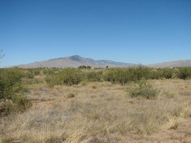 Lot 798 W Cactus Blossom Drive V, Benson, AZ 85602 (#22025654) :: Long Realty - The Vallee Gold Team