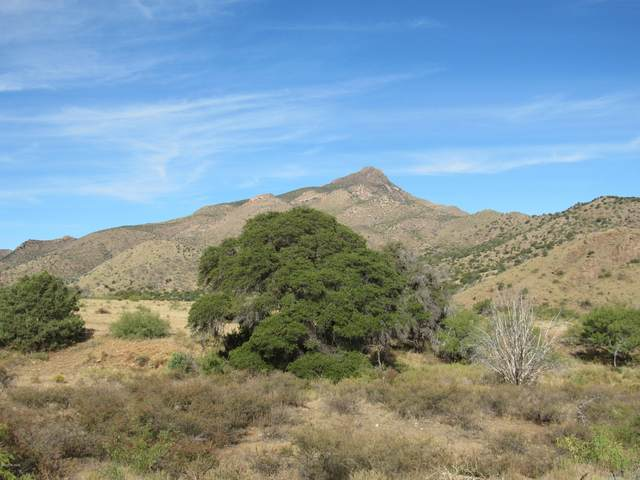26 Acres W Hilltop Road, San Simon, AZ 85632 (MLS #22026012) :: My Home Group