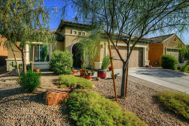 10354 S Tea Wagon Way, Vail, AZ 85641 (#22026220) :: AZ Power Team | RE/MAX Results