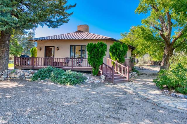 1185 W Prickly Pear Lane, Portal, AZ 85632 (MLS #22026710) :: My Home Group